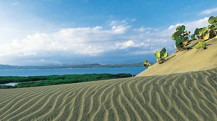 Resultado de imagen para dunas de bani